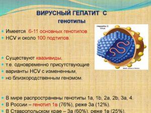 Виды генотипа вируса гепатита С