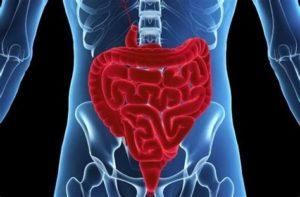 Восстанавливается перистальтика кишечника