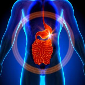 заболевания пищеварительной системы