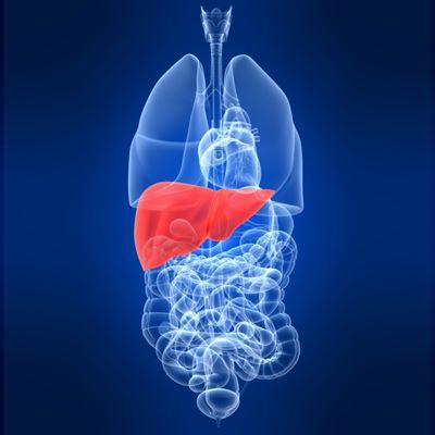 Вирусный гепатит C  все о болезни