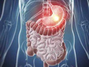 Алкоголь нарушает функционирование желудочно-кишечного тракта