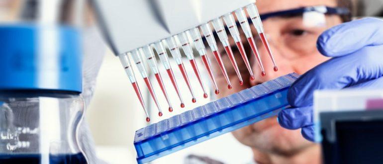 ДНК и ПЦР вируса гепатита В
